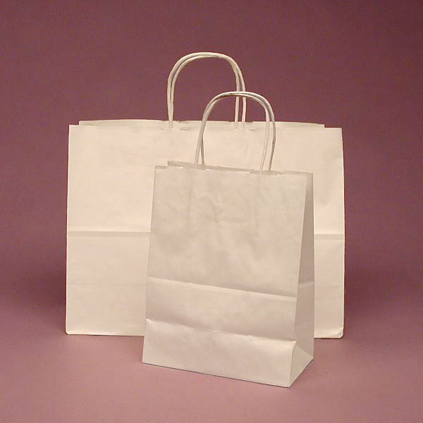 Mẫu túi giấy Kraft bảo vệ môi trường