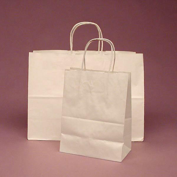 Mẫu túi giấy Kraft